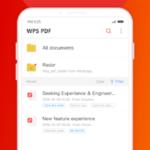 WPS PDF