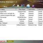 Auto Window Manager 1.2