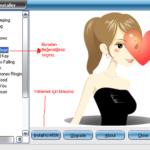 MSN Winks Installer 1.2.2 Göz Kırpmaları